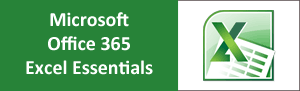 office-365-excel-essentials-training-course